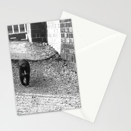 Railway Cat Greeting Stationery Cards