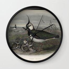 236 Vanellus cristatus.Additional Lapwing or Peewit Wall Clock