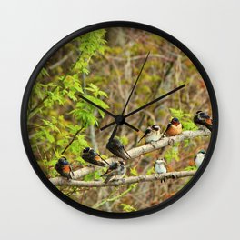 Spring Migration Fallout; 4 swallow species, 1 branch Wall Clock