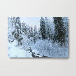Snowy Eagle Creek Metal Print