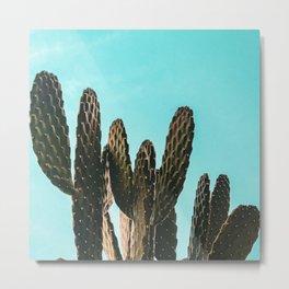 Cactus Photography Print {1 of 3} | Teal Succulent Plant Nature Western Desert Plants  Design Decor Metal Print
