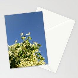 Dogwood #1 Stationery Cards