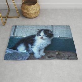 Black + White Kitten Rug