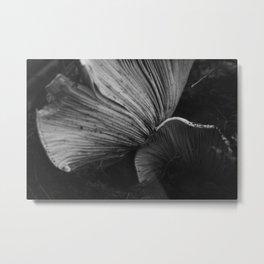 Russula Brevipes Mushroom of the Pacific Northwest  Metal Print