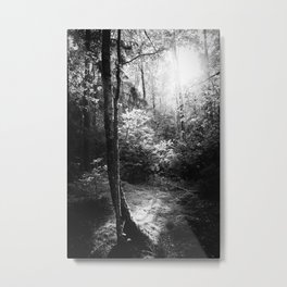 A Thing Of The Soul Metal Print