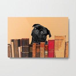 Old Books and Black Pug dog behind Metal Print