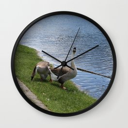 big birds Wall Clock
