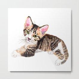 Brown Tabby Baby Cat Metal Print