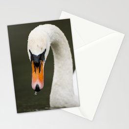 1046365 Mute Swan Stationery Cards