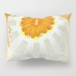 Apocopation Concord Flowers  ID:16165-104553-87970 Pillow Sham