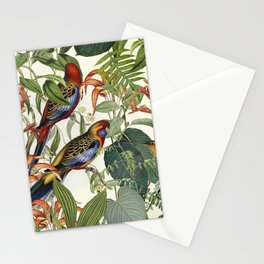 Jungle Birds Tropical Paradise Botanical Vintage Illustration Stationery Cards