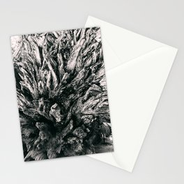 Roots, fallen tree Stationery Cards