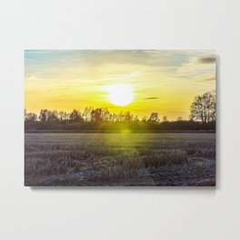 Countryside in the Ticino river natural park during winter before sunset Metal Print