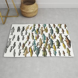 Fish Beach Nautical multicolor and black and white Rug