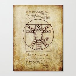 Vitruvian Cat Canvas Print