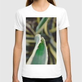 Floral photography print | Greenery in Isreal, Tel Aviv | Colourful travel wanderlust photography ar T-shirt