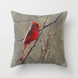 Cardinal Watching Throw Pillow