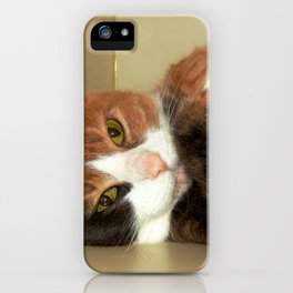 Want to take me home? iPhone Case