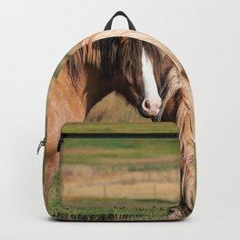 Gypsy Vanner Horses 0271 - Colorado Backpack