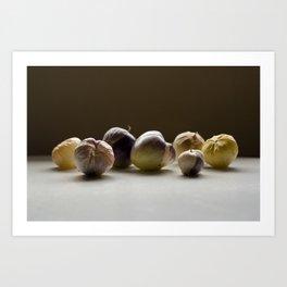 Purple Tomatillos Art Print