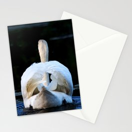 Back of a Swan Stationery Cards