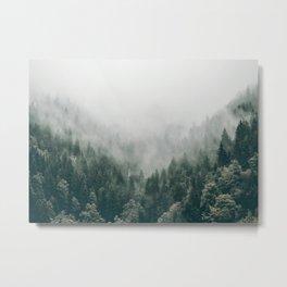 Foggy Forest 3 Metal Print