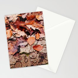 Leaves and bark - the little beauties of nature Stationery Cards