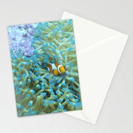 Scared little clownfish Stationery Cards