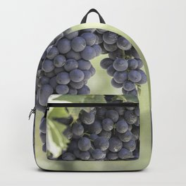 black grape grows on vineyard Backpack