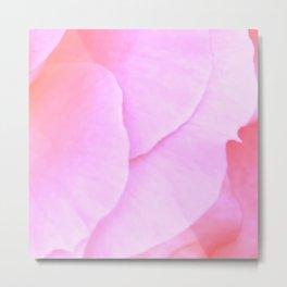 Pink Rose Petals | Nadia Bonello Metal Print