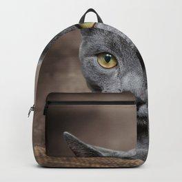 cute gray cat Backpack