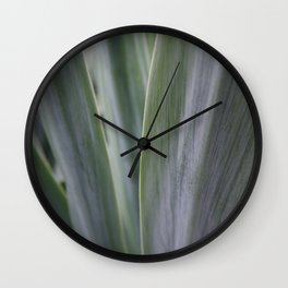 Agave Macro Wall Clock