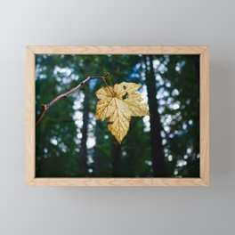 Veiny Leaf in the Humboldt Forest Framed Mini Art Print