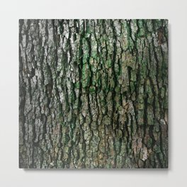Trunk Moss Metal Print