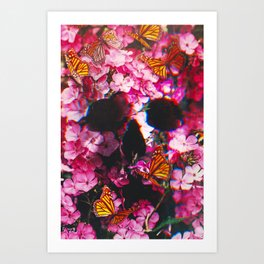 Pinkish Flowers  Art Print