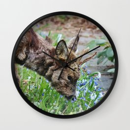 Little roe deer in backyard Wall Clock