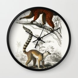 Lemur illustrated by Charles Dessalines D Orbigny (1806-1876) Wall Clock