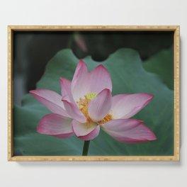 Hangzhou Lotus Serving Tray