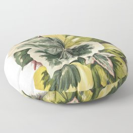 Various Ivy Leaves from The Ivy a Monograph (1872) by Shirley Hibberd (1825-1890) Floor Pillow