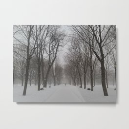Snowscape Montreal Metal Print