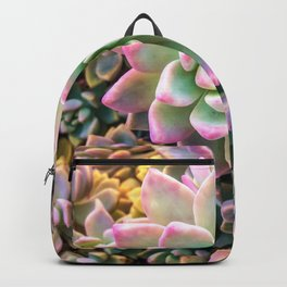 closeup green and pink succulent plant background Backpack