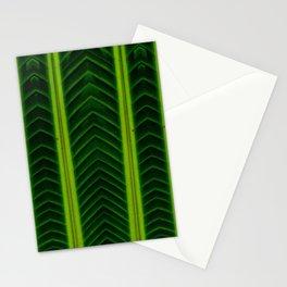 Palm line Stationery Cards