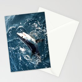 Baby Mako Stationery Cards