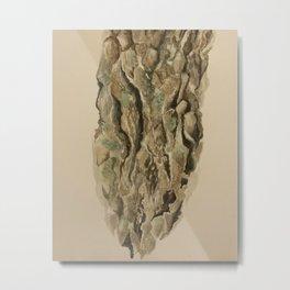 Red Oak Bark  Metal Print