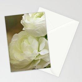 Spring Botanical -- White Ranunculus Flowers Stationery Cards