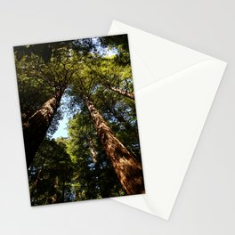 Sequioas Reaching  For The Sky Stationery Cards