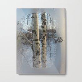 Frosty day Metal Print