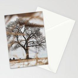 Framed by Reeds Stationery Cards