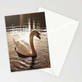 Swan in the evening light Stationery Cards