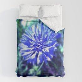 Deceiving 2 Comforters